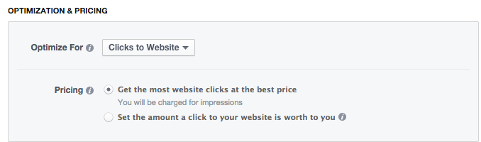 Clicks to Website Facebook bidding strategy