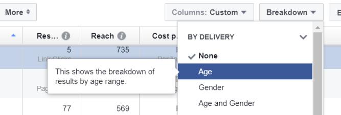 Facebook data segmenting