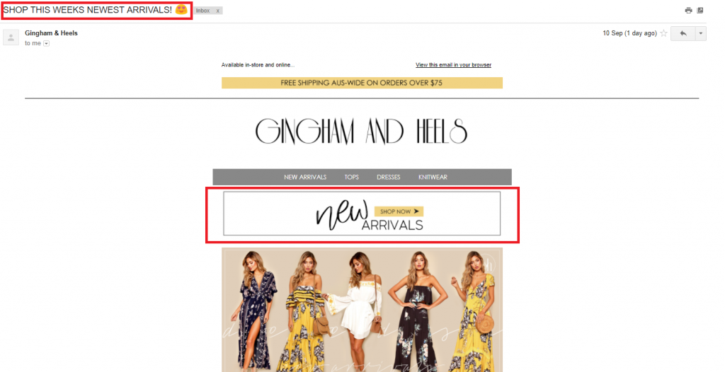 example of ecommerce email campaign