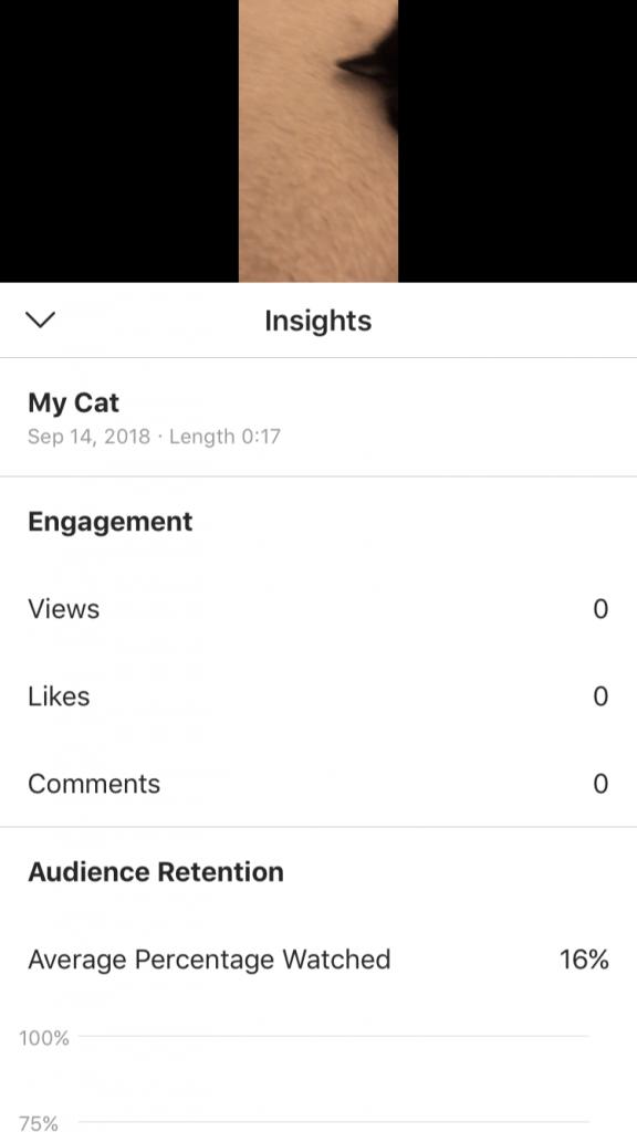 IGTV insights