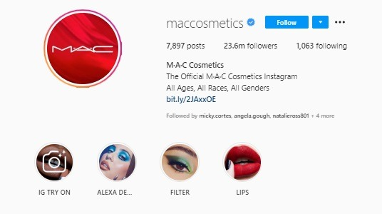 cosmetics Instagram bio example