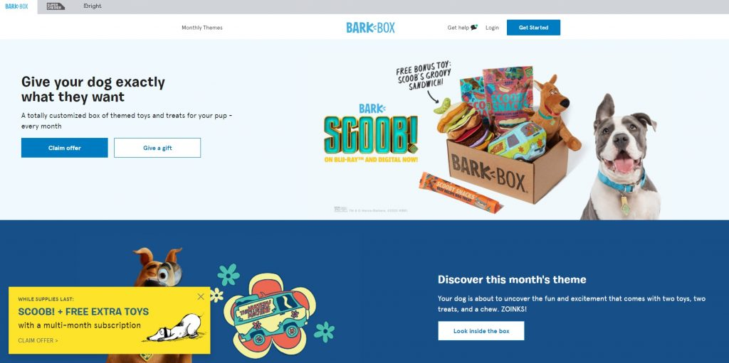 bark box online store copy example