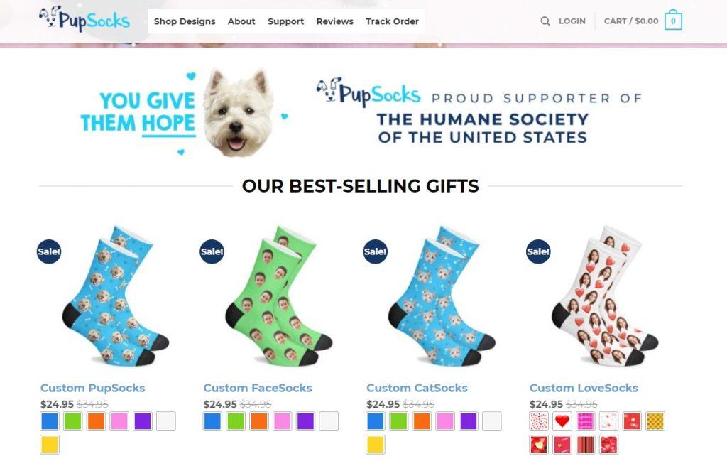 pet supplies apparel example
