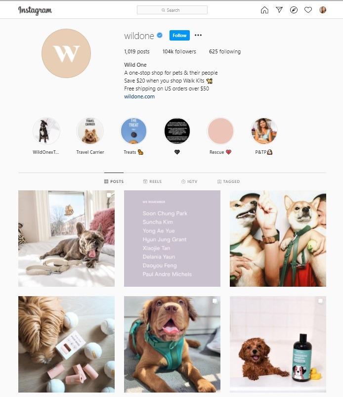 wild one pet store Instagram account